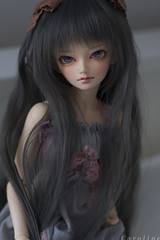 {pink &  grey} (c a r o l i n e*) Tags: doll bjd mnf shushu royalgray leekeworld minifee royalgrey mnfshushu dollga