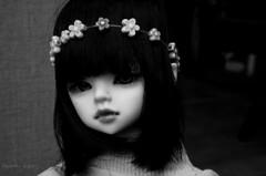 Hello vampie (Cordelia Stars) Tags: red brown black beauty dark hair ginger eyes doll tanya vampire mark bob style ears spot lips clip elf wig bjd fangs dim mole msd faceup dimdoll yuiinc benetia