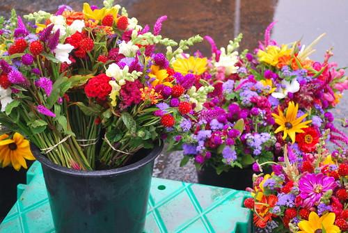 Farmers Market flowers-1