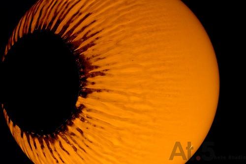 外星人018(X11)外星人的眼睛IMG_0068.jpg