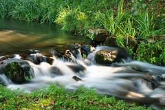 River Len (Jez22) Tags: uk blur green water grass river kent rocks stream rapids milky fastflowing jeremysage