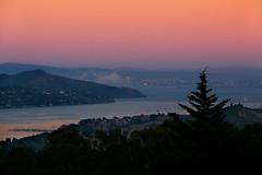 The Bay From Above (lefeber) Tags: ocean sanfrancisco california city sunset mountains fog oakland bay berkeley nationalpark woods dusk muirwoods plus eveninglight