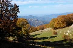 Autunno nella faggeta (fabrizio64) Tags: picnic italia sentiero amici autunno colori cavalli lazio cima abruzzo bosco laquila vetta escursione faggi montisimbruini cimavallevona