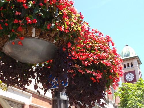 Redfern Street