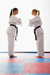 bxp244935 (EricMeredith) Tags: judo sports standing studio asian concentration fight intense uniform diverse resp