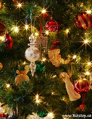 Twinkle, Twinkle (Karen_Chappell) Tags: santa christmas xmas red holiday tree green glass angel lights star beads shiny decoration balls twinkle noel ornament