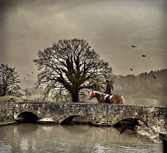 Winner A1 (h.koppdelaney) Tags: show life bridge light horse art digital photoshop dark countryside energy power ride symbol god spirit side fear goddess competition philosophy horsemen riding negative winner romantic awareness metaphor astrology angst returning pilgrim symbolism psychology archetype