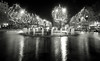 Christmas lights reflection (Franck_Michel) Tags: christmas city light blackandwhite bw tree water night canon eos noiretblanc noel nb lumiere nuit arbre ville 400d canon400d artinbw mtrtrophyshot
