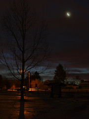 blue hour (Kathy Fenton) Tags: trees moon silhouette treesilhouette colorado shadows streetlamp cresentmoon wheatridge sweetlight moonsliver bluehours nauticaltwilight crownhillpark