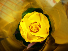 Yellow rose (The Gift of Gifts) Tags: flower leaves lady origami happiness yellowrose grateful kindness 2009 valentinesday kawasaki kawasakirose paperrose diamondrose origamiflower topseven masterphotos origamirose mywinners abigfave  artrose rosasdepapel fortheloveofyellow  livrerose  happinessrose papierrose giftofgifts giyhng giftofgift giftofgiftsrose  rosadicarta piparardaigh roseenpapier papierstieg papprrose   paprovre papierrosen    rosedicarta  kertasmawar katgller  papirrua paprrzsa  letrrose raamatrose piparrose    cartearose rose karatasirose papperrose papurrose