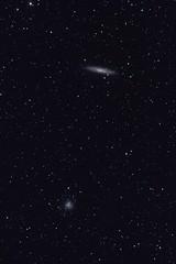 NGC253 la Galaxie du Sculpteur et NGC 288 (Kévin 07) Tags: sky ic ngc m galaxy nebula astrophotography m31 astronomy 31 sculptor galaxie 288 253 astronomie sculpteur ngc253 nébuleuse astrrophotographie
