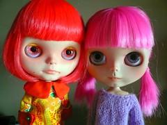 Poppy2 & Poni