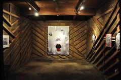 Kura #2 — Galeri