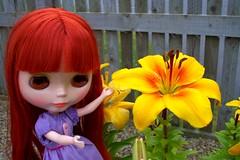 Frejya Molly: Oh, new lillies!