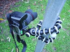 Nikon D90 + Gorilla Pod SLR Zoom