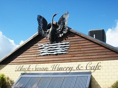 black swan winery