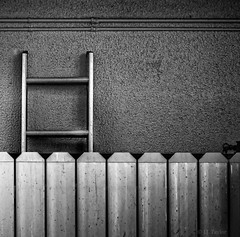 THE LADDER (J.J. Taylor) Tags: lighting wood light blackandwhite bw white black art texture geometric monochrome lines fence square photography one design blackwhite wooden pattern order natural artistic florida patterns pipes bumpy symmetry spots simplicity symmetrical balance spotted geometrical ladder concept rough straight conceptual simple organization textured solid organized concepts patterned artistry coarse