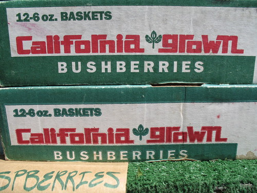 California Grown Bushberries
