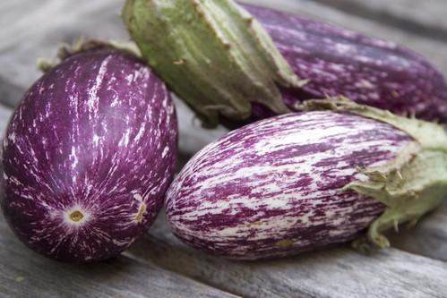 Eggplant (II)