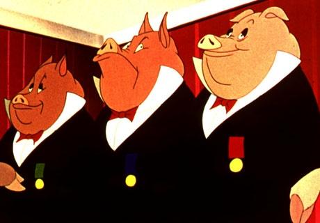 pigs-politicians
