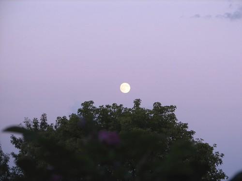 Westport moonrise