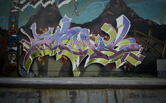 Pacific North West (Scotty Cash) Tags: vancouver graffiti 9 lives 2009 nwk sueme