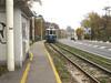 l'arrivo del tram presso l'Obelisco