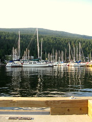 IMG_1498 (lynnsiemens) Tags: deepcove labourday