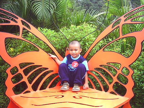 Winged Yuan