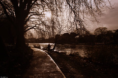 Thames River (arash_rk) Tags: london landscape kingston arash thamesriver kingstonuponthames    canon40d  arashrazzaghkarimi