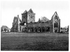 Dumfries Sweetheart abbey