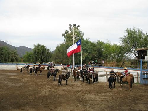 Rodeo Rapel IMG_5467