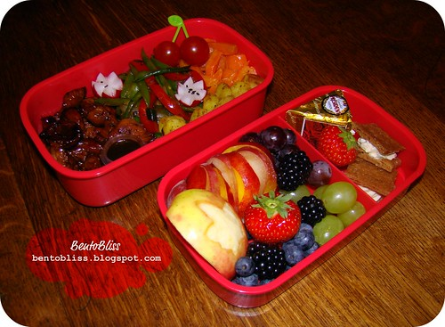 Terriyaki Turkey Bento
