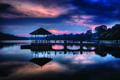 Lower Pierce Reservoir in HDR (williamcho) Tags: park nature water night reflections garden landscape mirror scenery singapore colorful jetty bluehour hdr attraction piercereservoir platinumphoto flickrestrellas williamcho