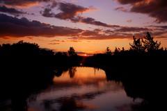 aresizliimsin... (NURAY YUZBASI) Tags: sunset cloud reflection silhouette turkey 1855mm desolate siluet ankara bulut gnbatm yansma ssz altnpark sundowm canonrebelxti platinumphoto anawesomeshot 100commentgroup saariysqualitypictures