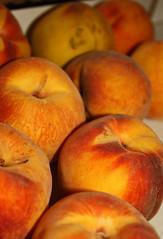 Peaches 2 (netman007 (Andre` Cutajar)) Tags: blackandwhite orange dog brown cute nice expressions malta andre peaches cutajar netman007