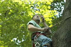 _MG_6351.JPG (zimbablade) Tags: trees sleepyhollow dougmiller videopoem