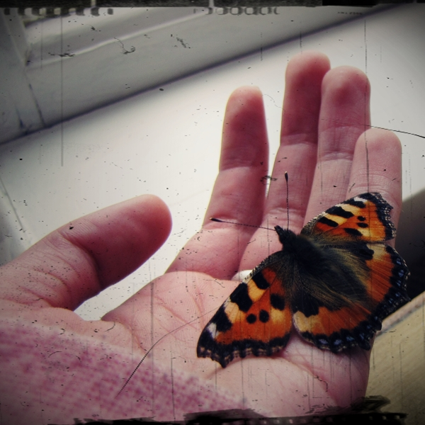 A New Friend...