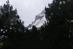 Skyline (Tubroos!) Tags: trees snow pine mexico mountaineering summit alpinismo crags lamalinche