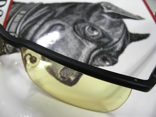 Dog & Glasses