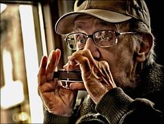 harmonica solo @  Starbucks (TheWalkinMan) Tags: portrait music starbucks harmonica nikonsunglassesscoredatthethriftstore