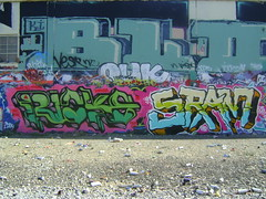 Ricks Sram SAC CBS (The Pros & Cons) Tags: graffiti wai ae cbs skateallcities