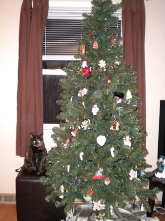 chloe_christmastree3