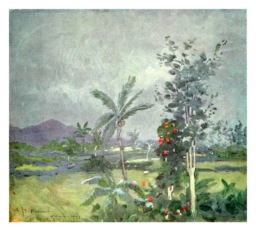 017- LLuvia tropical en Jamaica-The West Indies 1905- Ilustrations Archibald Stevenson Forrest