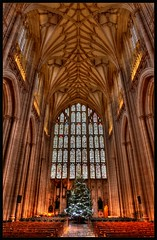 HDR_0431_b (busb) Tags: uk england cathedral stainedglass hampshire christmastree aisle winchester hdr vaultedceiling winchestercathedral 2470mm hants photomatix busb tonemapped 6xp d700