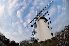 Fishmeal Eyemill (M J M) Tags: blue winter sky cloud cold tower mill windmill fisheye mjm swirl d200 curve brabant molen valkenswaard lightroom noord korenmolen borkel