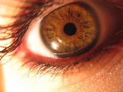Another Eye Shot (KalinAyn Photo) Tags: portrait selfportrait eye eyes eyelashes greeneyes eyeball hazeleyes eyelash pupil eyelid retina eyesocket girlportrait eyewrinkle womanportrait femalportrait
