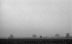 Desolate land (Rosenthal Photography) Tags: bäume pflanzen nebel ff135 ilforddelta3200 städte offensen asa3200 meinstedt 20170103 landschaft analog olympuszuikoautos18x50 olympusom2 dörfer siedlungen landscape fields trees mist fog winter olympus ilford epson v800 35mm om2