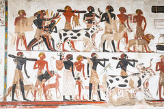 Ancient Egypt (Daveography.ca) Tags: ancient england britishmuseum old greatbritain painting ancientegypt unitedkingdom historical london museum history egypt wallpainting thebritishmuseum uk gb