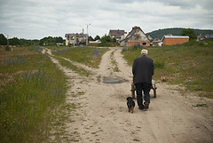 (Derek Knight Photography) Tags: street old summer dog man june poland polska elderly farmer cart 2009 pomorze pomorskie derekknight wejherowa